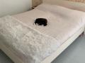Bed-Bente-1